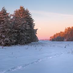 Былые зимы ...
