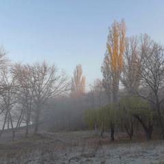 Утро ноября - первый заморозок