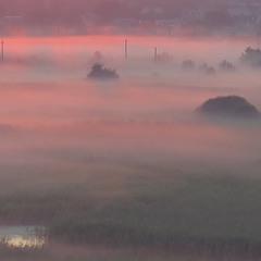Ранкові тумани