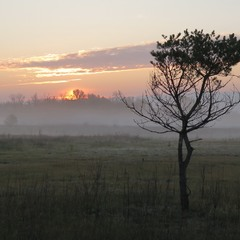 Встречая восход