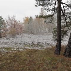 Первый снежок.