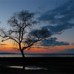 На фоне заката