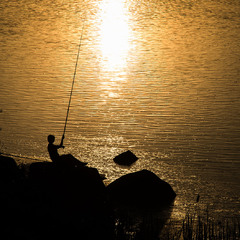 Ловець сонця