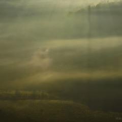 Тумане, туманечку