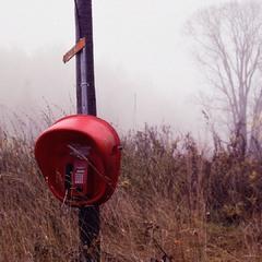 Туманное утро телефона