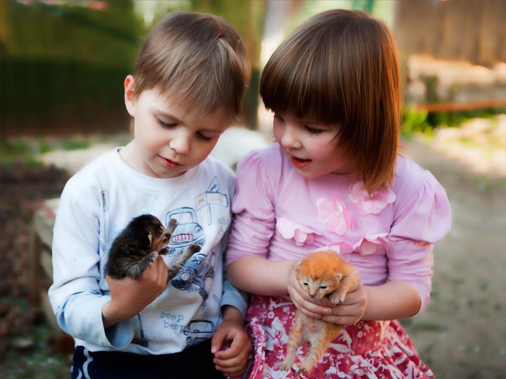 Картинки детская дружба