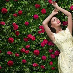 В розовом саду