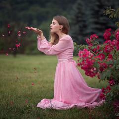 Трояндове пелюстя