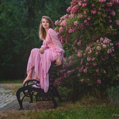 Рожевий вечір