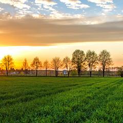 ...вечір в агроландшафті республіки Польща...