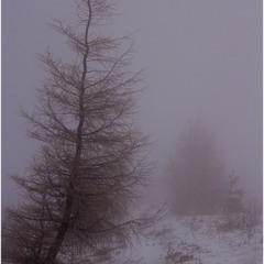 ...сніговий шторм...