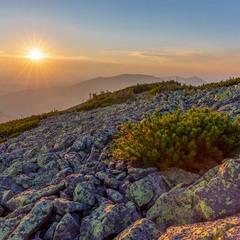 гора ця Грофа, Західні Горгани, Україна...захід сонця...