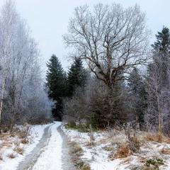 Ну із Новим Роком! такий світ, така зима...