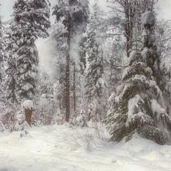 ...після снігопадів...