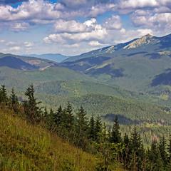 Центральні Горгани, вид на г. Велика Сивуля, фото зроблено із хребта Тавпиширка