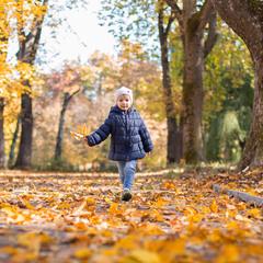 ...про осінь...