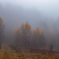 така осінь...