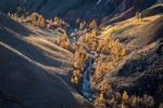 Ущелье реки Чаганузун