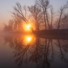 Солнечные туманные отражения