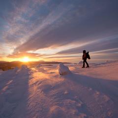 Навстречу Арктическому солнцу