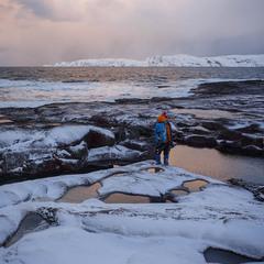 На берегу Арктики