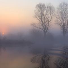 Туманные поиски рассвета