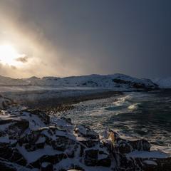 Побережье Арктики
