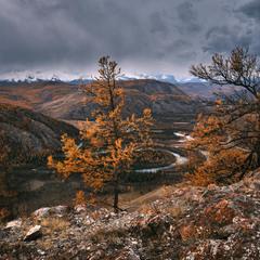 Курайская степь с видом на реку Чуя и Северо-Чуйский хребет