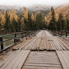Мост через реку Аргут