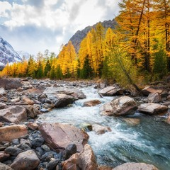 Осень в долине реки Актру