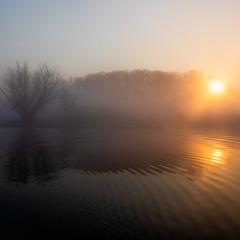 Туманный рассвет