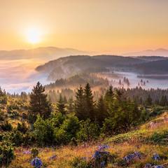 Панорама Чуревац
