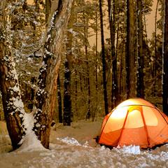 Стоянка в зимнем лесу