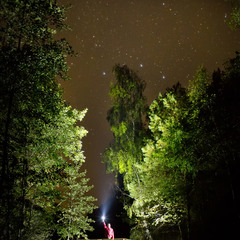 Ночь на Бондаревском болоте
