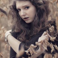 Somewhere In Autumn