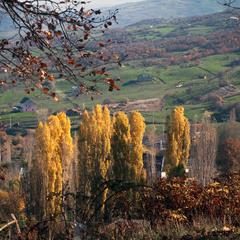 Вид на осень