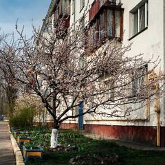 №9. Весна навпроти...
