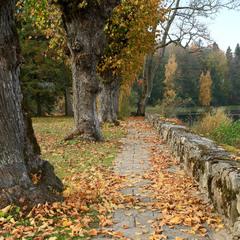 На згадку про осінь