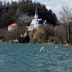 На згадку про Словенію