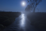 Місячна ніч