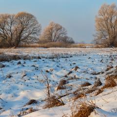 Зимовим ранком
