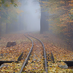 Туманна осінь