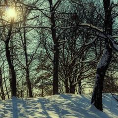 Ще трошки зими