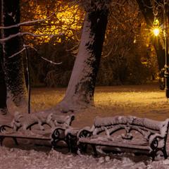 Вечір у львівському парку