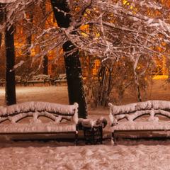Лавочки в зимовому парку