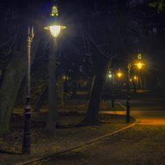 Ніч і парку Івана Франка