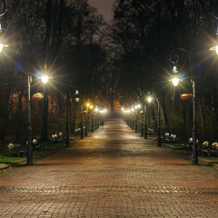 Парк Івана Франка