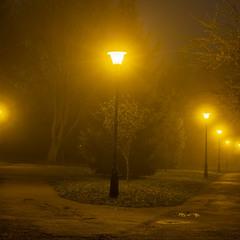 Парк Боднарівка вночі