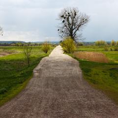 Дорога дальня