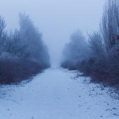 Знову зима